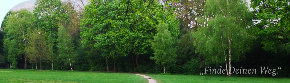 Bäume und Weg