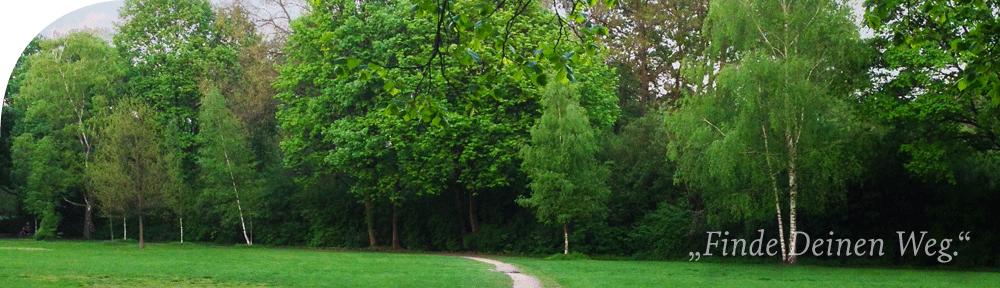 Bäume Weg